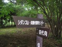 PICT0719.jpg
