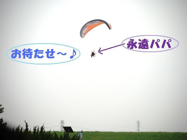 177_20090715114130.jpg