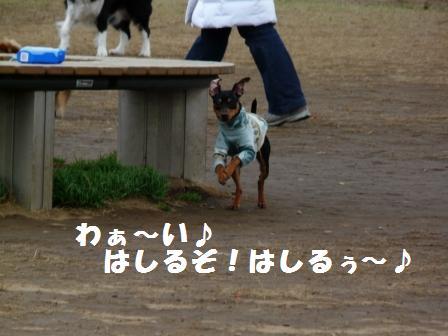 走るぞ~ッ!!