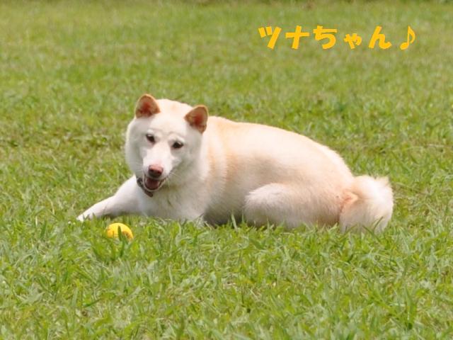09-7-20 松戸 D.R 174
