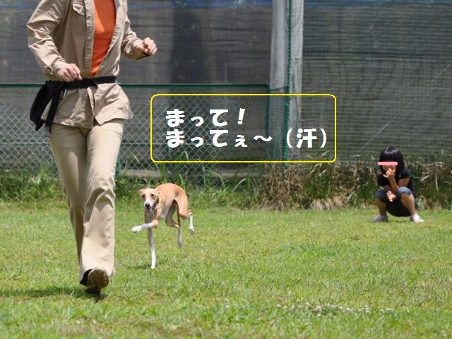 09-7-20 松戸 D.R 215