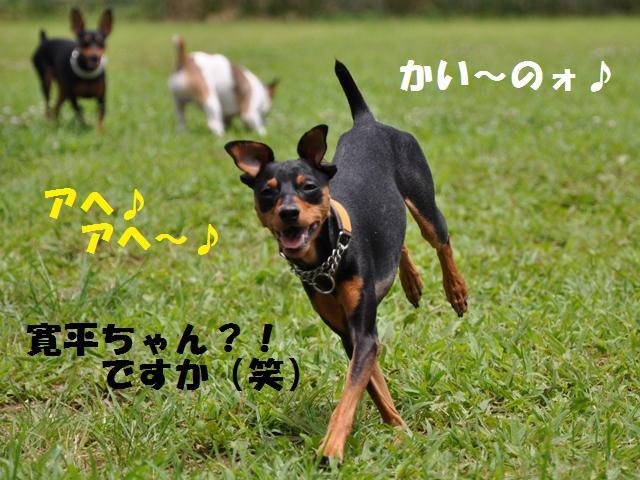 09-7-20 松戸 D.R 235