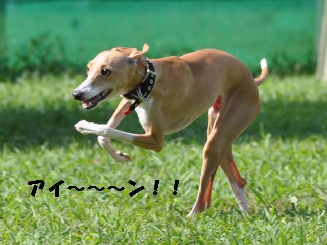 09-7-20 松戸 D.R 580