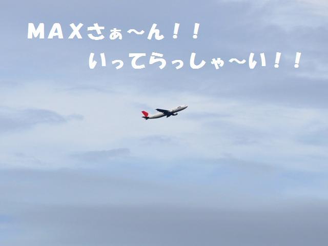 9-8-6 東扇島 006