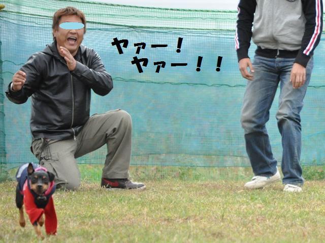 9-10-24.25 仙台 348