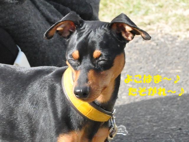 仙台 レオライ 594