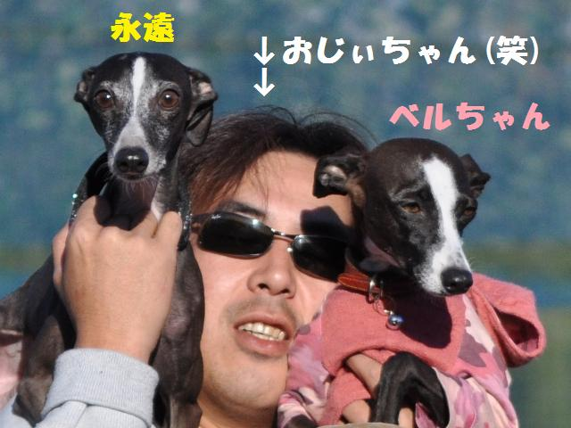 11.3 愉快村 in 松戸 225