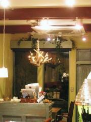 店内奥ライトのインテリアが素敵。。。