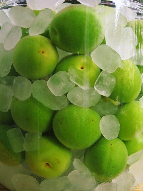 氷砂糖と梅を交互に・・・