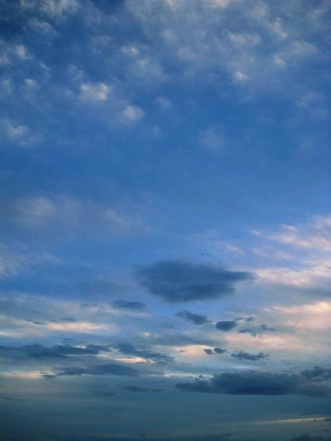 雄大な空を眺めて、涼を感じる・・・