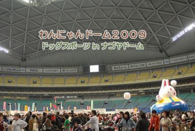 090218-09.jpg