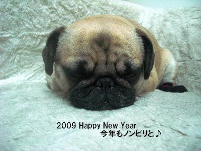 NyuNyu20091枚目