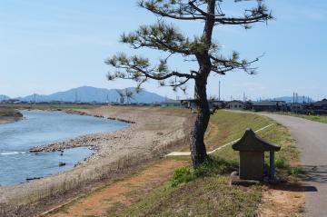 五十嵐川から弥彦山を望む