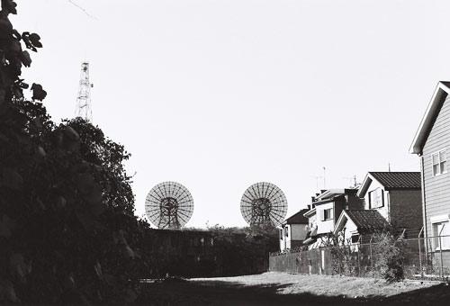 futyupara200811_46.jpg