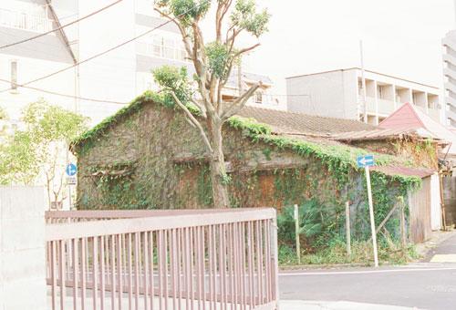 ichiichi_3.jpg