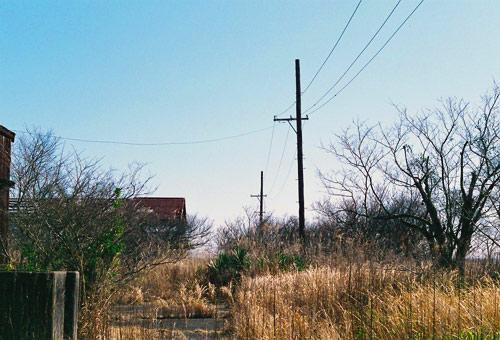 kashima200903_11.jpg