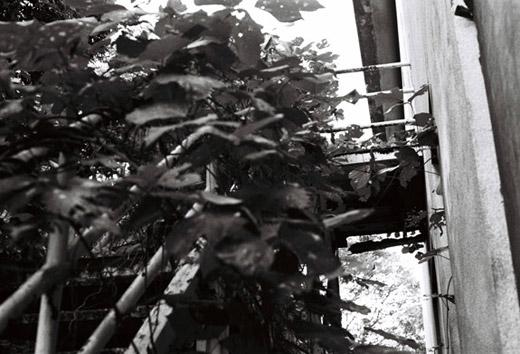kasumigaura_sk6.jpg
