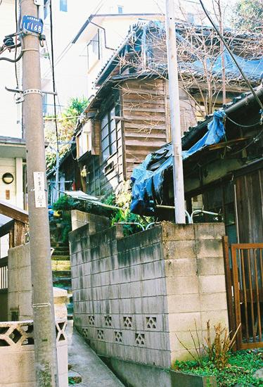 koisikawa20092.jpg