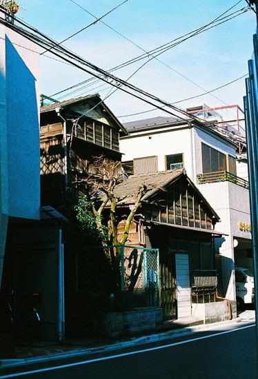 koisikawa20097.jpg