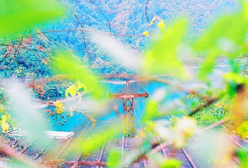 mitousan_15.jpg