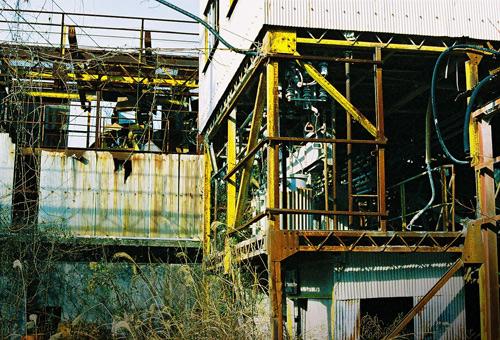 murakasi200812_12.jpg