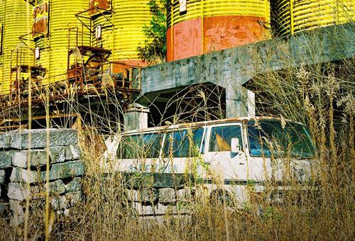murakasi200812_18.jpg