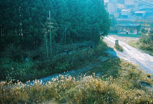 murakasi200812_39.jpg