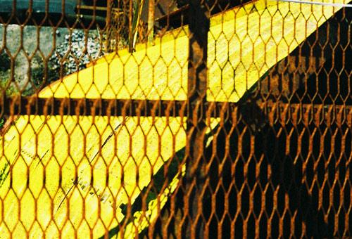 murakasi200812_46.jpg