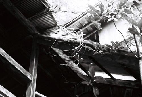 okutamahaioku_4.jpg