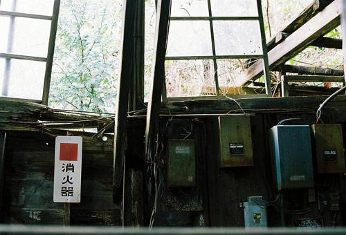 seigosi2009_25.jpg