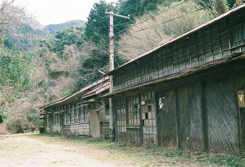seigosi2009_3.jpg