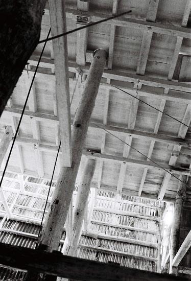 shiraishirokuro2008_2.jpg