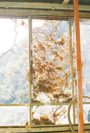 shiraisikouzan_77.jpg