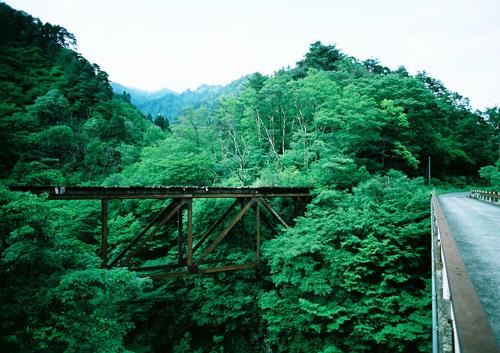 tsujigawa06_3.jpg