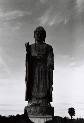 ushikusama_3.jpg