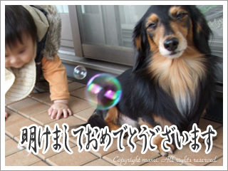 20090101_3.jpg