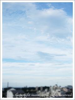 20090707_1.jpg