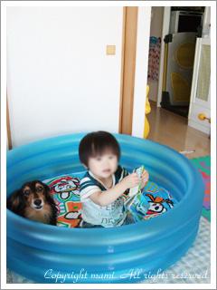 20090812_3.jpg