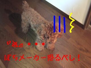 DSCF0820.jpg