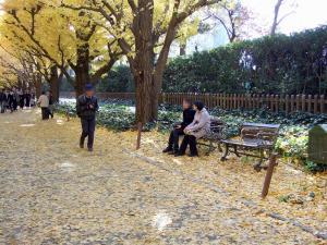Jingu_icho_namiki_0811-23_mosaic.jpg