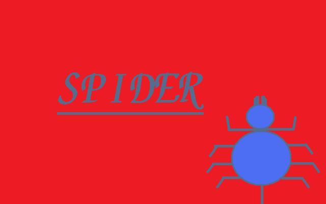 スパイダー!!