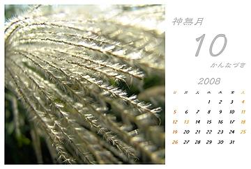 2008_10_1.jpg