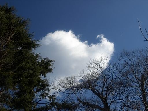 ひときわ白い雲が