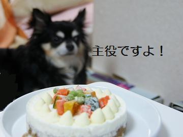 ケーキを見て!