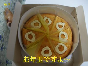 チーズケーキですってよ!