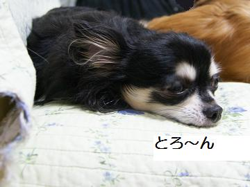 落ち着いて眠れます