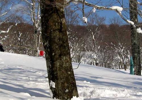 スキー場へ帰着
