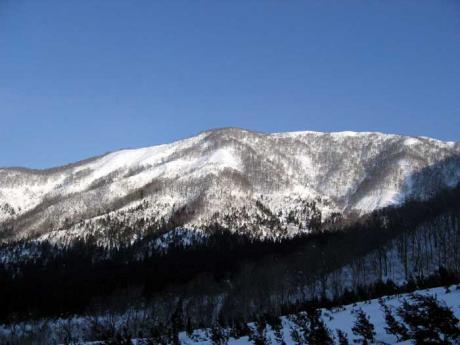 東谷山を見上げる