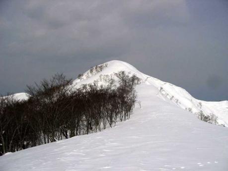 日白山への稜線