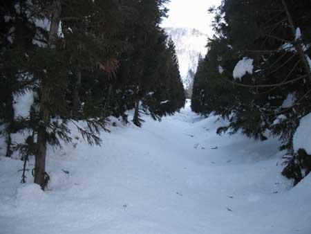 二居の林道